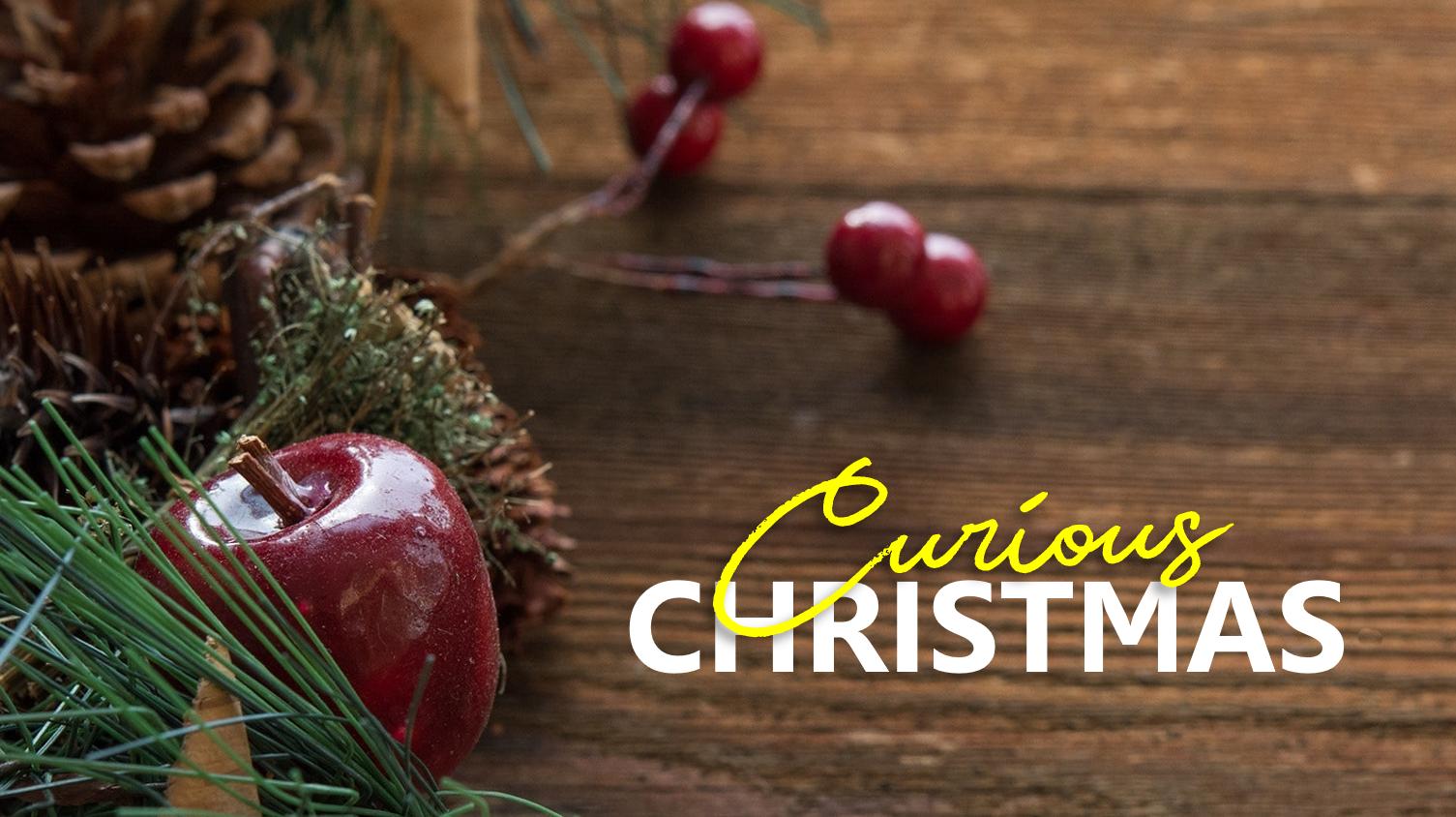 Curious Christmas